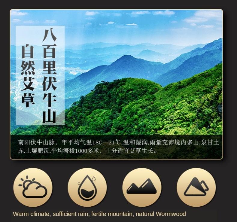 Bolsa de medicina china para baño de pies, cuidado de la salud, ayuda al dormir