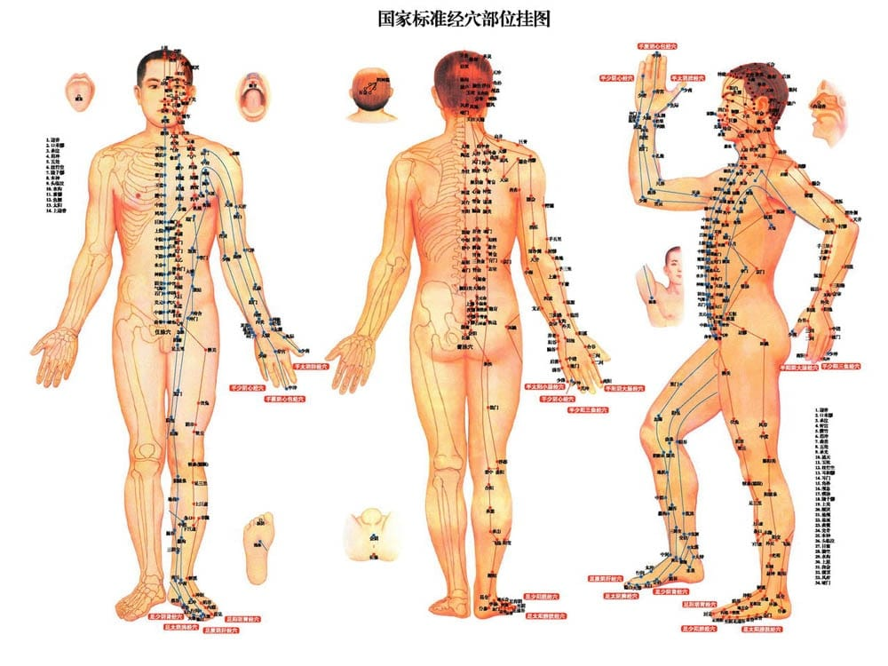 Reumatismo artritis bálsamo de tigre ungüento conjunta muscular frota dolores alivio de dolor de crema de aceite de refrigeración para el picor chino de P0050