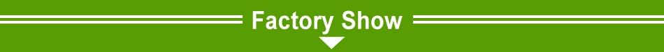 Cordyceps Sinensis Extracto de micelio cápsulas Anti fatiga
